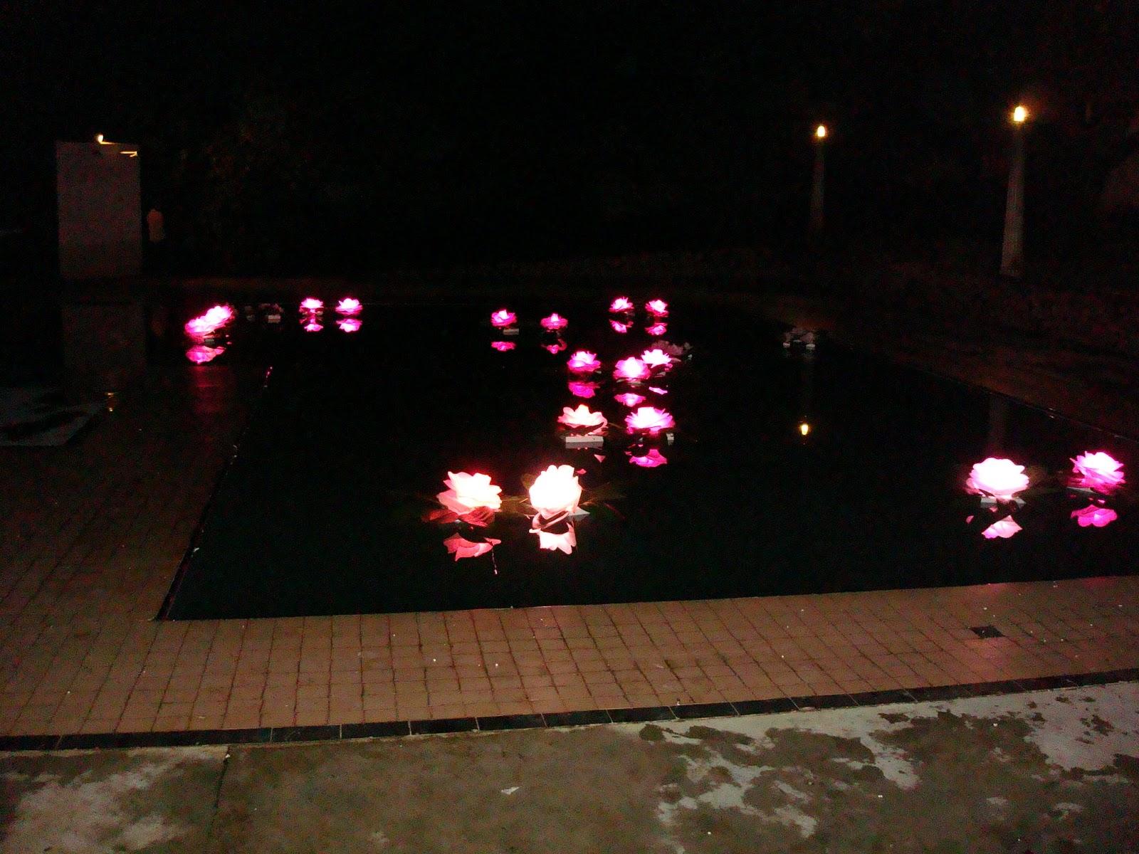 decoração-da-piscina-para-casamento-16